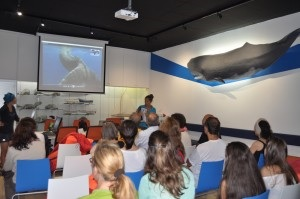 Marine biologist presentation Azores
