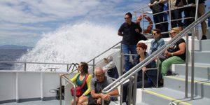 Catamaran holidays in Azores