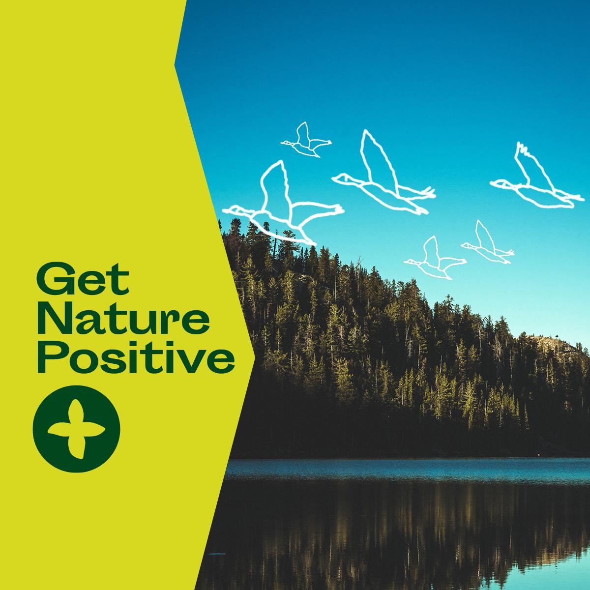 Get Nature Positive